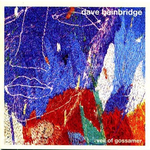 Dave BainBridge / Veil of Gossamer